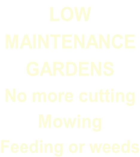 LOW  MAINTENANCE GARDENS No more cutting Mowing  Feeding or weeds